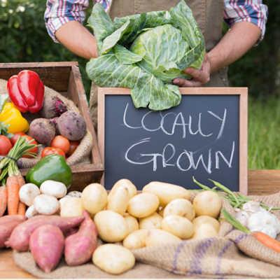 Farmers Market Pop-Up Concord