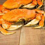 23rd Annual Dungeness Crab Party